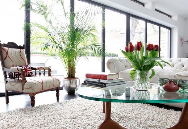 Nên treo gì trong nhà cho năm 2017 Đinh Dậu